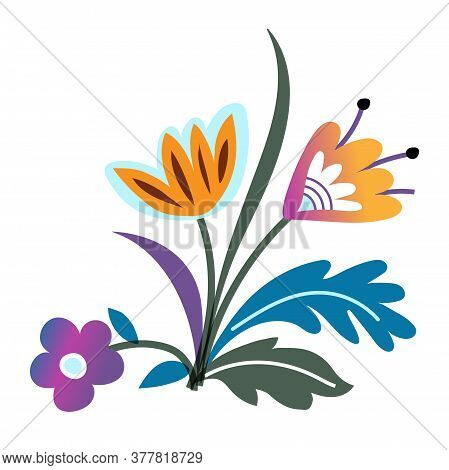 Colorful Wild Early Spring Forest And Garden Blooming Flowers Isolated On White Background. Flowerbe