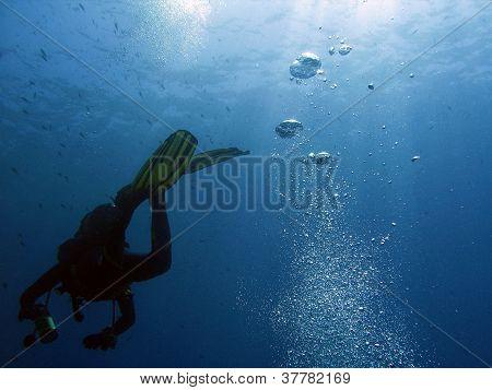Diver and bubbles