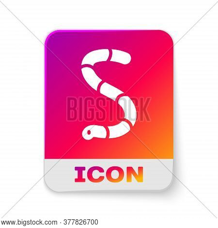 White Worm Icon Isolated On White Background. Fishing Tackle. Rectangle Color Button. Vector