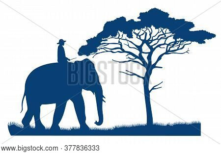 Blue Vector Silhouette Of An Elephant Rider. African Tree In The Savannah. Mammal And Human. Safari