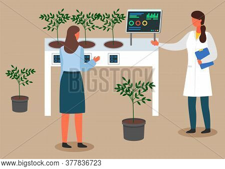 Female Scientists Are Examining Plant Samples. Chemically Nitrate Test. Urban Agriculture And Garden