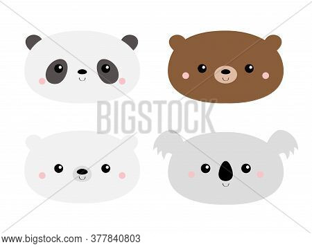 Cute Bear Set. Koala, Panda, Grizzly, Polar Cub. Funny Head Face. Kawaii Cartoon Character. Notebook