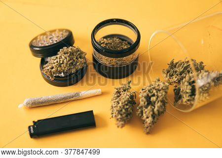 Marijuana Weed Bud And Grinder. Joint Weed. The Pot Leaves On Buds. Indica Medical Health.