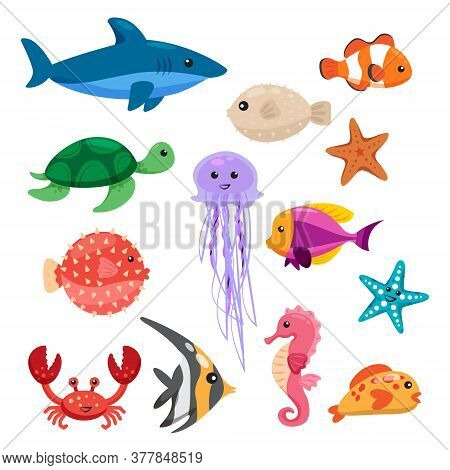 Set Sea Animals. Shell, Cuttlefish, Crab, Seaweed, Star, Fish And Shark Isolated On White Background