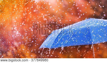 Autumn Background With Blue Umbrella Under Rain Against Water Drops Splash. Rainy Weather Concept.