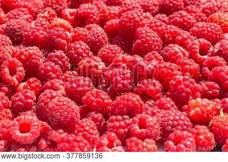 Detail Of Fresh And Sweet Raspberries.berries Close Up.raspberry Fruit Background. Beautiful Selecti
