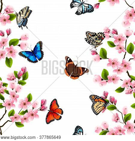 Illustration With Sakura And Butterflies.vector Pattern With Blooming Sakura And Colorful Butterflie