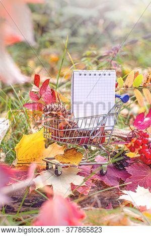 Halloween And Thanksgiving Concept, Autumn Sales. Fall Season. Maple Leaves, Berries And Notebook In