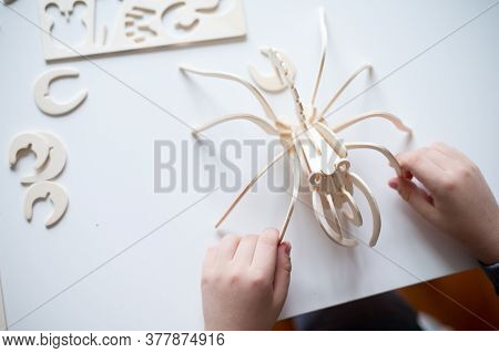 Hands Of A Child And A Wooden Spider On The Table, Which The Boy Build From Spare Parts According To