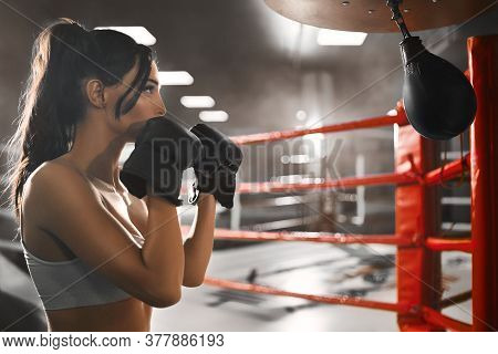 Side View Of Fit Sexy Concentrated Brunette Woman Wearing Boxing Gloves. Young Attractive Fighter In