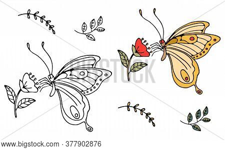 Exotic Flat Colorful Butterfly Profile In Black Lines, Isolated On White. Logo For Beauty Salon. Vec
