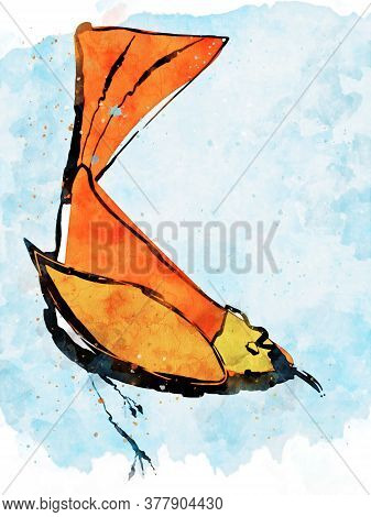 Doodle Drawing Image Of Bird, Digital Watercolor Painting, Illustration For Fall Season