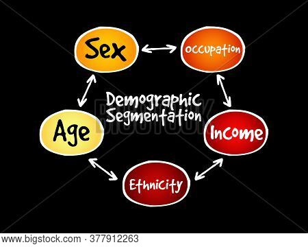 Demographic Segmentation Mind Map Flowchart Social Business Concept For Presentations And Reports