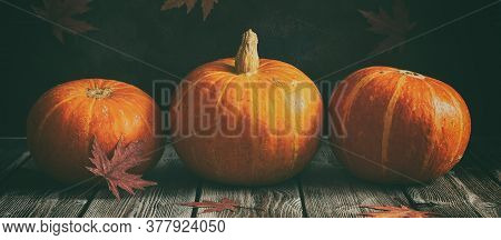 Fresh Pumpkins In A Row On A Wooden Dark Vintage Table, Banner. Rustic Style. Thanksgiving And Hallo