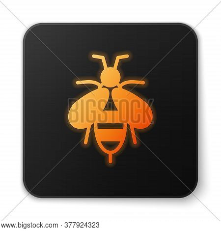 Orange Glowing Neon Bee Icon Isolated On White Background. Sweet Natural Food. Honeybee Or Apis With