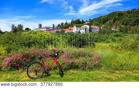 Red bike in front of wild flowers in Mackinac  island, Michigan in summer time.