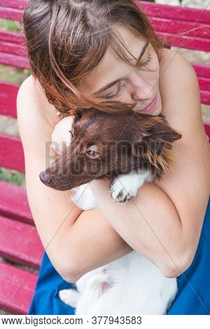 A Girl In A Blue Sundress Sits On A Bench And Hugs A Beautiful Little Brown And White Dog. Portrait