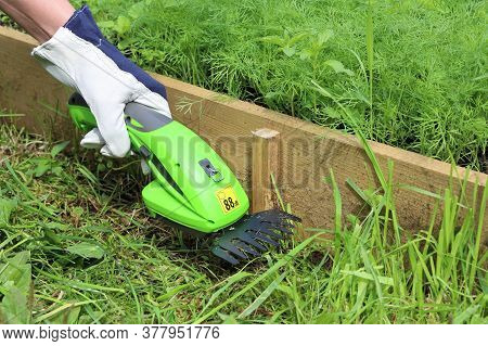 Close-up Of Hand In Leather Gardening Glove Holds An Electric Hand-held Grass Trimmer And Trims A Pa