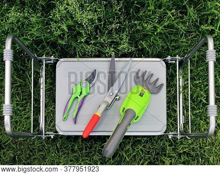 Electric Garden Trimmer, Scissors And Pruning Shears Needed For Cutting Plants And Trees. Flat Lay O