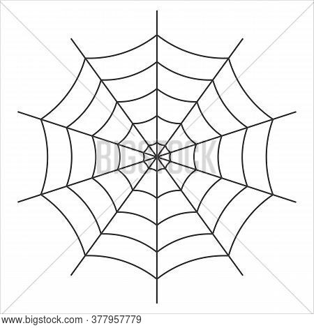 Black Color Cob Web Drawing On White Background