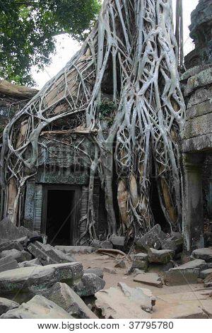 Khmer temple entrance, Angkor Wat