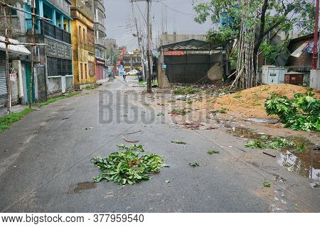 Howrah, West Bengal, India - 21st May 2020 : Super Cyclone Amphan Uprooted Tree , Part Of Which Fell