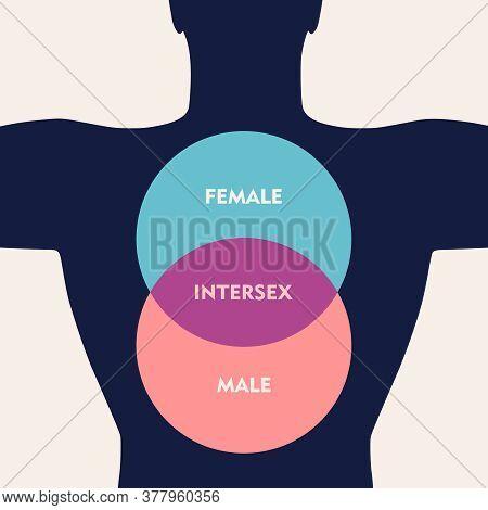 Transgender Transsexual Concept. Unconventional Sexual Orientation Illustration.