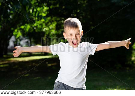 Happy Boy Child Is Smiling, Teasing And Spread His Arms To The Sides. Portrait Of Young Boy In Natur