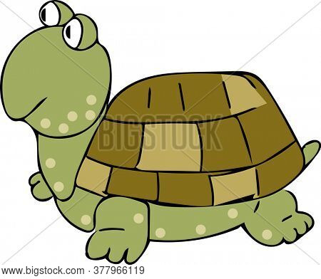 Flat Art Tortoise Cartoon Character Illustration