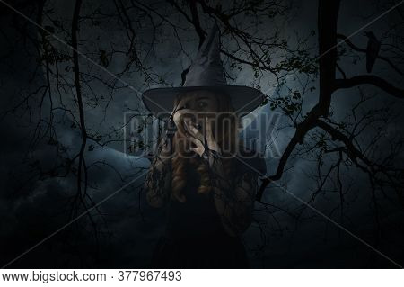 Scary Halloween Witch Standing Over Dead Tree, Crow, Birds, Full Moon And Spooky Cloudy Sky, Hallowe