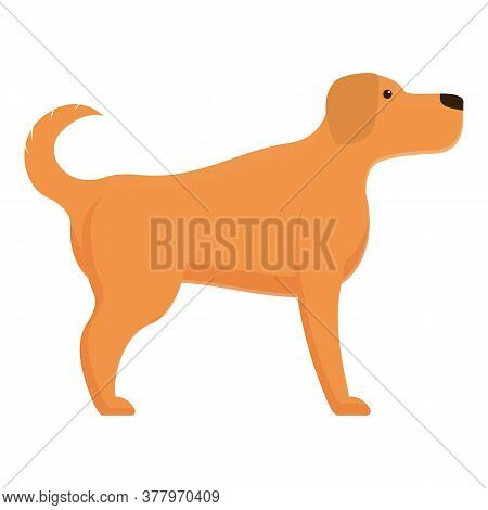Dog Command Icon. Cartoon Of Dog Command Vector Icon For Web Design Isolated On White Background