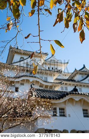 Himeji, Japan, 06/11/19. View Of White Himeji Castle Through Colorful Autumn Leaves .