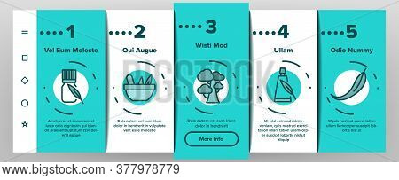 Eucalyptus Herbal Leaf Onboarding Mobile App Page Screen Vector. Eucalyptus Candy And Bubble Gum, Pi