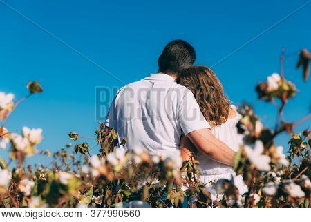 Young Man And Woman Hugging Outdoor In Cotton Field With Blue Sky, Back Side. Woman In White Dress A