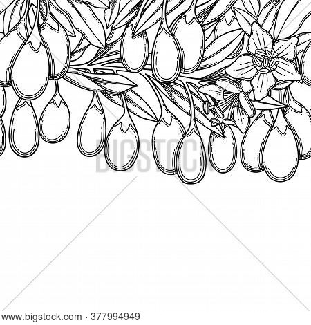 Graphic Goji Branches, Vector Repeated Seamless Border