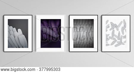 Realistic Vector Set Of Picture Frames In A4 Format Isolated On Gray Background. Feathers, Birds Plu