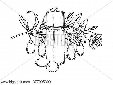 Graphic Essential Oil Bottle Decorated With Goji Berries, Leaves And Flowers
