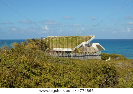 Grass Roof House