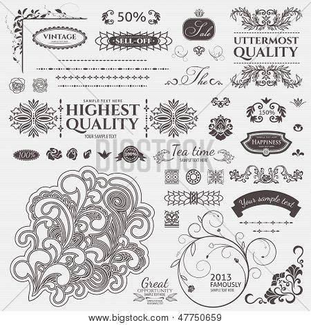 Scroll Design elements. Vector set: Floral and ornamental symbols