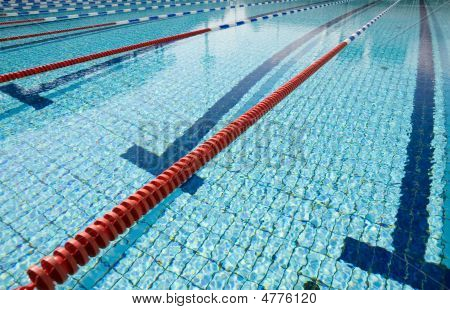 Swimming Pool Competition