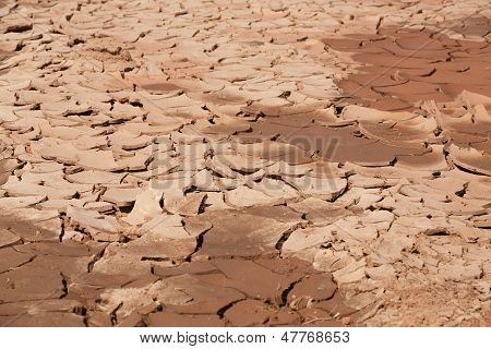 Dried Out Soil