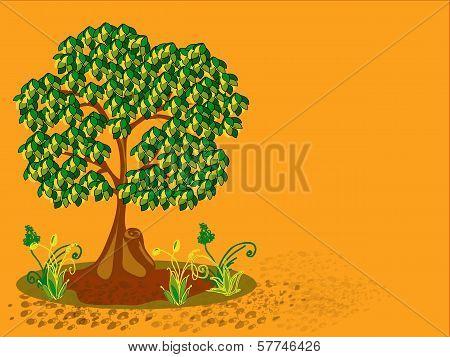 Tree, Plants And Stones.