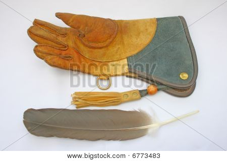 Falconry glove and feather