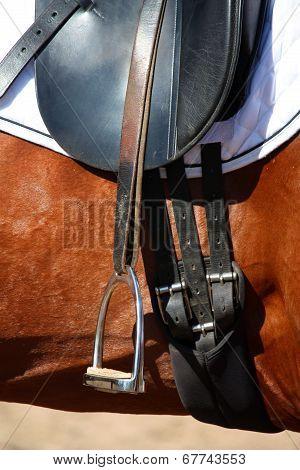 Black Leather Saddle Close Up