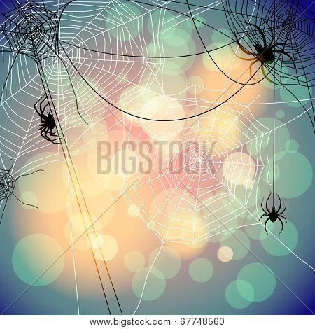 Festive background with spiders and web. Place for text
