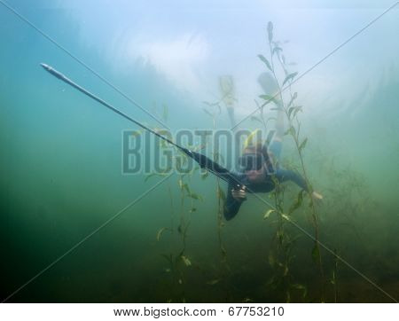 Underwater shot of the lady diving with spear gun using breath hold