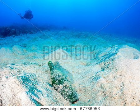 A SCUBA diver looks toward a discarded glass bottle on a dead, lifeless seabed poster