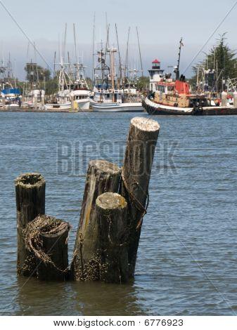 Fishing Trawlers in Port