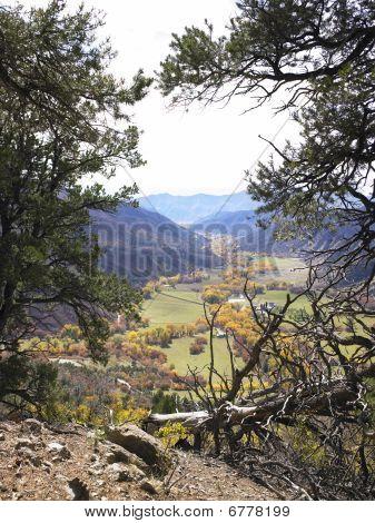 Valley Floor Seen Through Trees