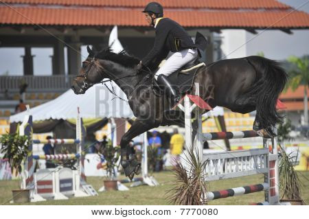 Show Jumping Equestrian
